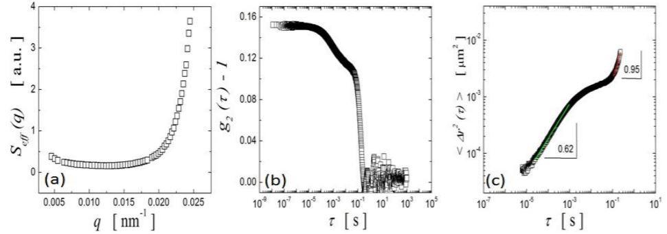 DLS Data Analysis: The CORENN Method